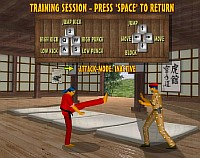 Bushido Fighters - Скриншоты