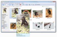 Photo Database - Скриншоты