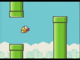Flappy Bird - Скриншоты